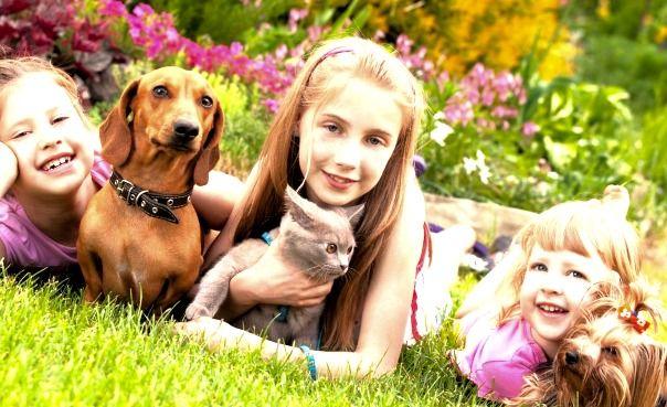 acertijos niños y mascotas